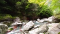 中津川渓谷 川 自然の動画 29776322