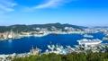 鍋冠山 客船の入港と長崎市街地を望む 29811579