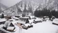 富山県 豪雪の五箇山 菅沼集落に降りしきる雪 29821581