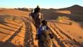 騎行駱駝 29971573