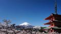 富士山 富士 新倉山浅間公園の動画 30079770