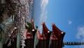 タテ素材 富士山タイムラプス 新倉富士浅間神社 満開の桜と頂に激しく流れる雲 パン 30083286