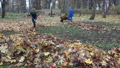 Family man and woman rake and compost leaves 30104646