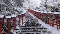 2月 貴船神社の雪景色 30114738