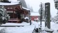 1月 雪の大講堂 比叡山延暦寺の東塔 30114746