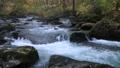 10月 紅葉の奥入瀬渓流 晩秋の東北 30114752