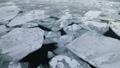 2月 オホーツク海の流氷 30125839