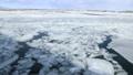 2月 オホーツク海の流氷 30125844