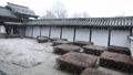 2月 冬の東福寺方丈の西庭 30125846