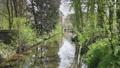 Dutch canal in park 30258216