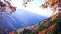 Autumn's Shimokuri no Sato Iida City Nagano Prefecture Toyama Township 30263148