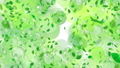 backdrop, background material, leaves 30279354