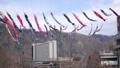 carp streamer, japanese carp-shaped windsock, carp banner 30346048