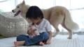 สัตว์,สัตว์ต่างๆ,เด็ก 30386758