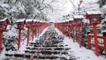 2月 貴船神社の雪景色 30521424