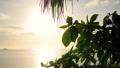 海 ビーチ 浜辺の動画 30544110