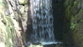 nature, natural, naturals 30703122