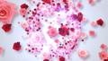 キラキラ パーティクル 爆発 誕生  バラ 花 フラッシュ 閃光 30740118
