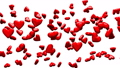 Red Hearts On White Background 30822287