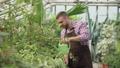 ハウス ビニールハウス 男性の動画 30932781
