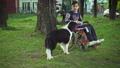 車イス わんこ 犬の動画 30996983