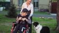 わんこ 犬 身体障害者の動画 30997089