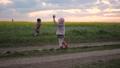 girl, boy, meadow 31052181