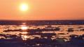 流氷のオホーツク海と夕日 31226801