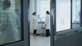 scientist, technician, laboratory 31288442