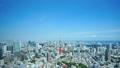東京タワー 東京 都市の動画 31317733