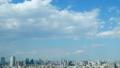 東京タワー 東京 都市の動画 31317739