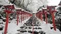 2月 貴船神社の雪景色 31319030