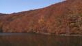 秋の蔦沼(パンニング) 31359892