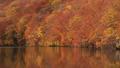 秋の蔦沼(パンニング) 31359896