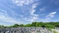青空の霊園 タイムラプス フィックス撮影 31508756