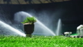 Soccer or football field irrigation system of 31512377