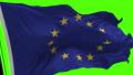 欧洲 旗帜 旗 31562736