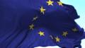 欧洲 旗帜 旗 31562776