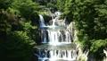 田原の滝 滝 鹿留川の動画 31807996