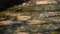 川 リバー 水 せせらぎ 岩 流れ 透明 晴天 ストーン ウォーター 31841755