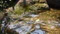 川 リバー 水 せせらぎ 岩 流れ 透明 晴天 ストーン ウォーター 31841757
