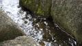 川 リバー 水 せせらぎ 岩 流れ 透明 晴天 ストーン ウォーター 31841762