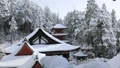 1月 積雪の長命(ちょうめい)寺 近江の冬景色 31876071