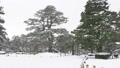 兼六園雪景色 31916020
