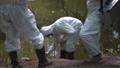 汚染 保護 確認の動画 31962133