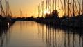 Dutch marina at sunset 32081083