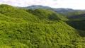 奄美大島の山々の空撮 (前進) 32353794
