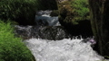 액체, 강, 흐름 32406009