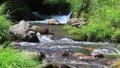 강, 흐름, 물 32406011