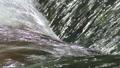 유수, 흐름, 맑은 32406013